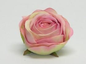 Ruža hl.