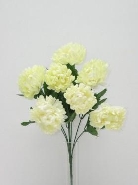 Kytica chryzantéma x 7