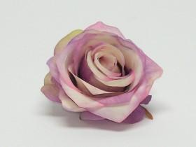 Ruža polorozv. hl.