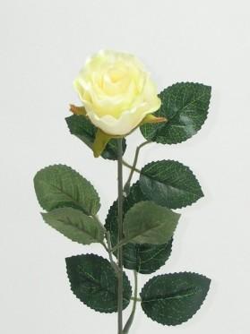 Ruža ks